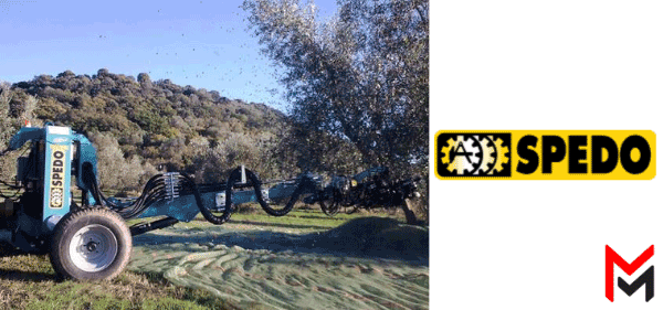 A.Spedo-raccolta-olive-moscadelli