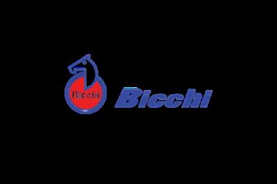 Bicchi
